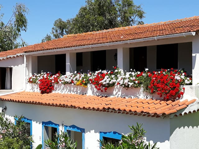 Farm south Lisbon - up to 50 persons with pool