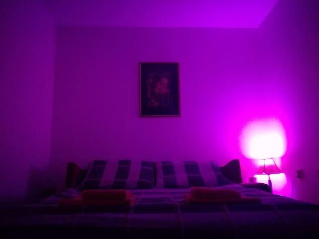 Maslina Room