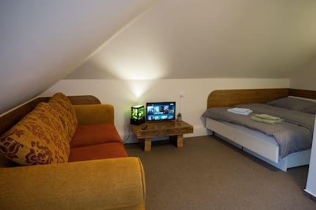 Podkrovná izba 4 na námestí
