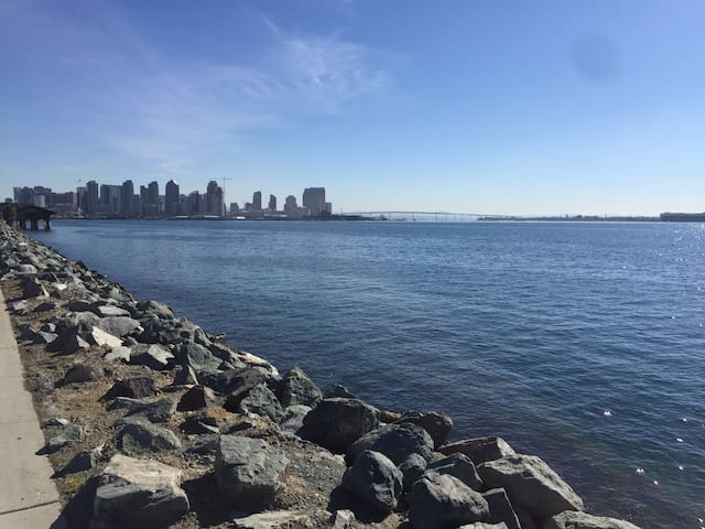 Views you'll see in San Diego Harbor Island!
