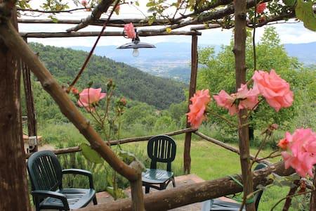 Casa con piscina e vista Val d'Arno - Reggello