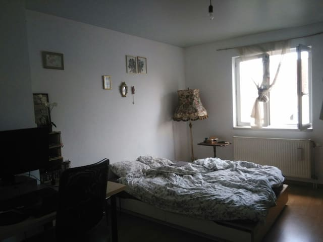 Nice room with nice vue on Brussels - Sint-Jans-Molenbeek - Apartment