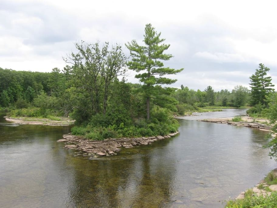 Enjoy swimming, fishing or just relaxing with a book at the Crowe River (a 7-8 minute walk up the Trans Canada Trail or rent one of our mountain bikes)