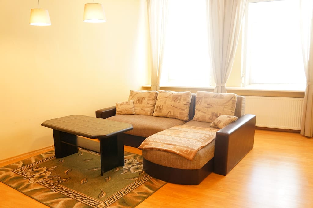 Living room with comfortable double sofa-bed