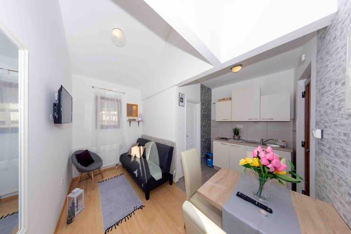 Apartment Maslina 2 Guesthouse Petrović