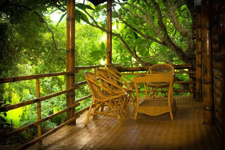 Yelagiri Bamboo House