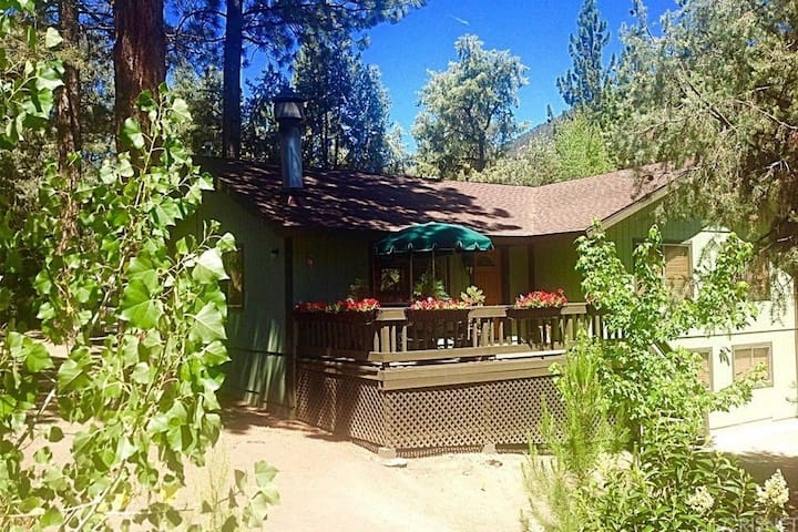 Bear Den Retreat - Remodeled & Family Friendly