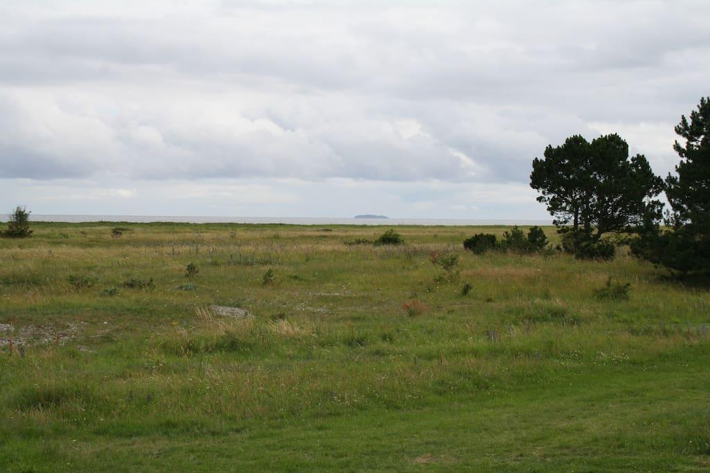 Udsigten over Kattegat med øen Hjelm i horisonten.