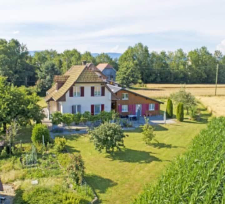 Gästehaus Fryburg -  mit eigener Küche