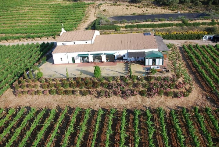 Casa integrada en la bodega Morosanto - Arriate - Dům