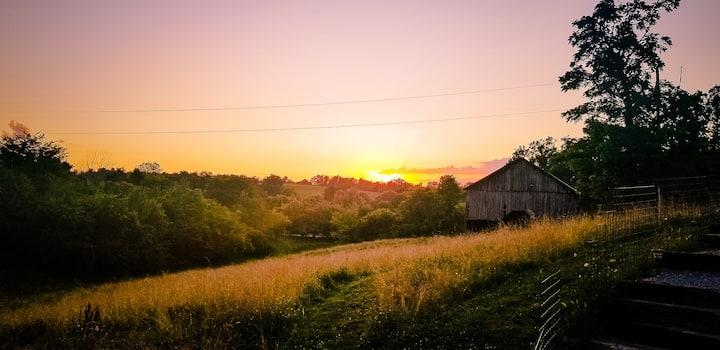 Farm getaway. Enjoy country life  in our farm