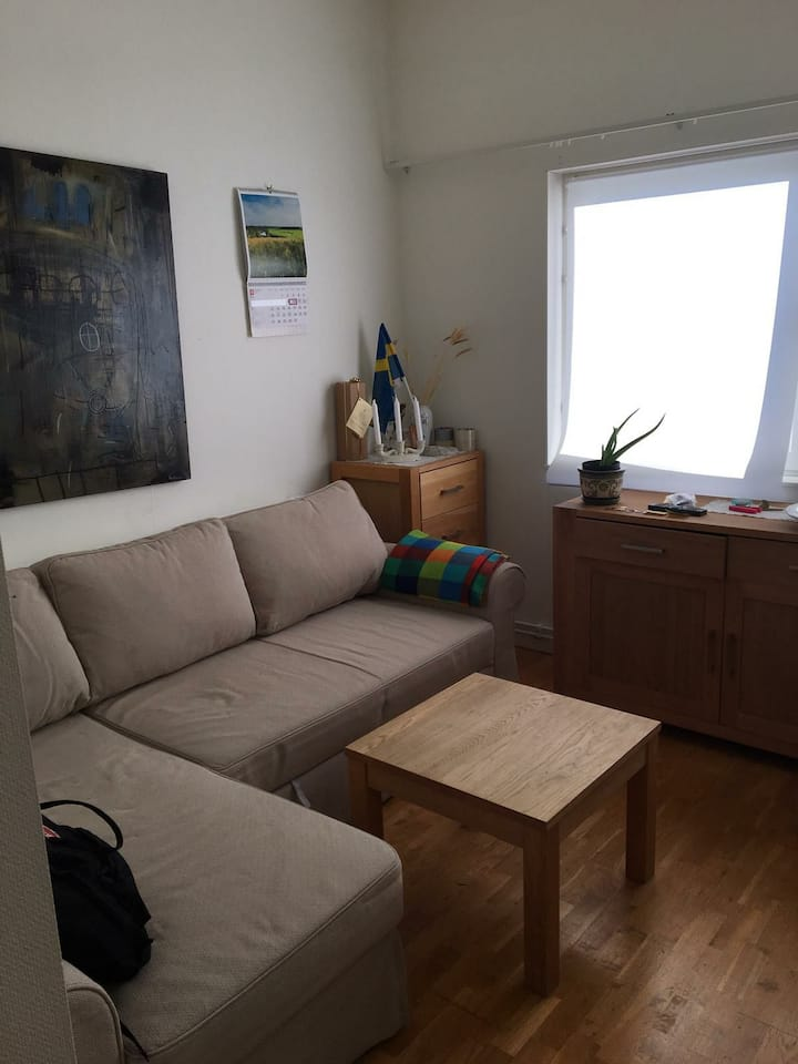 Long term One room apartment good transportation