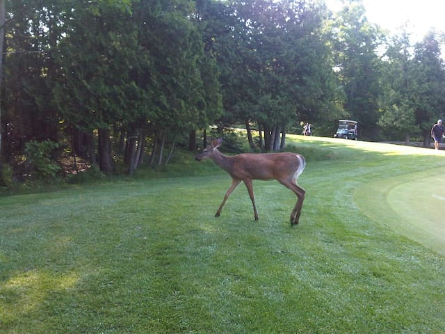 Make friends at Rocky Crest Golf Course.