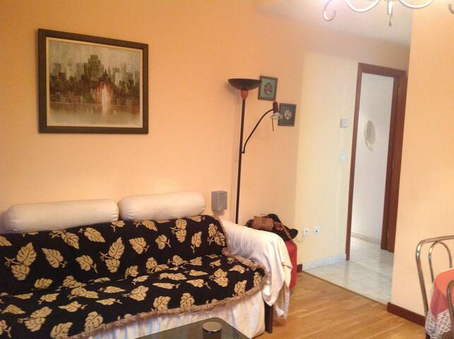 Acogedor apartamento. - Santiago de Compostela - Apartamento