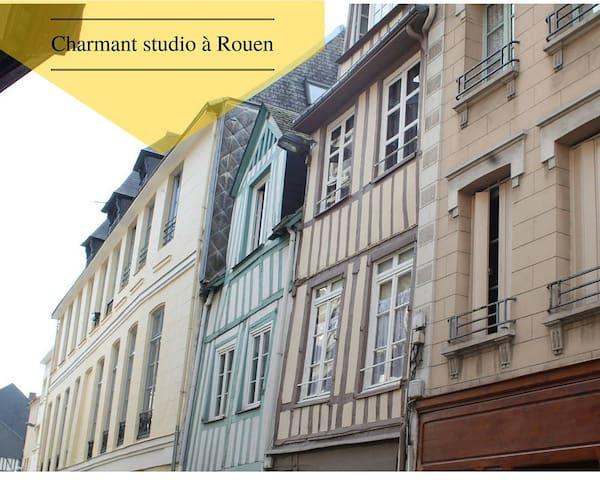 Charmant studio à Rouen