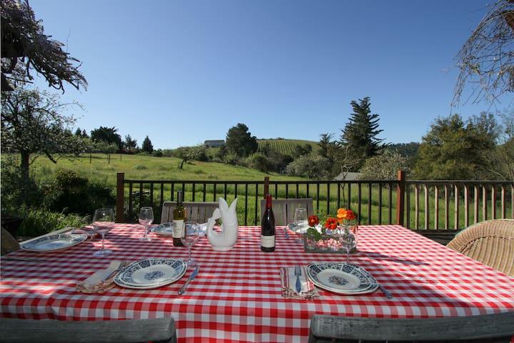 Private Wine Country Home w/views - Sebastopol - Haus