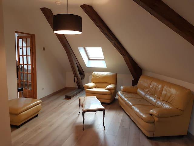 Appartement  dans une maison de maître à  Nancy.