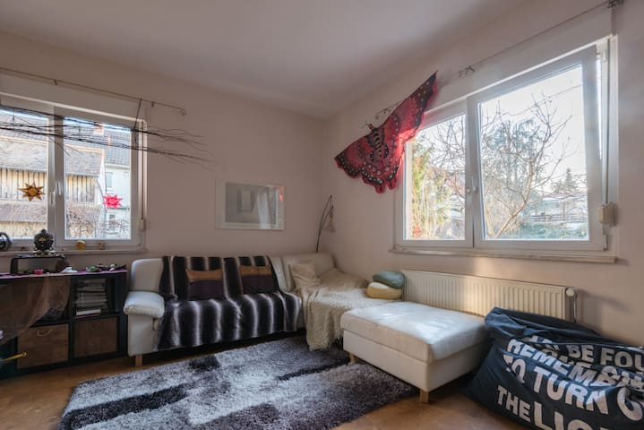 Place to stay in Heidelberg - Heidelberg - Appartement