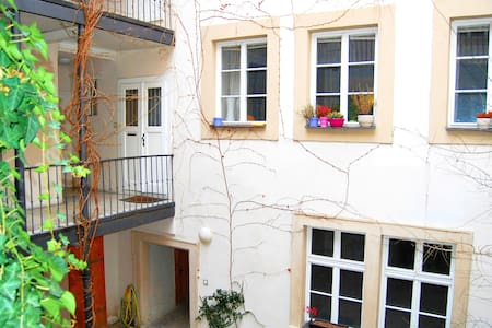 Quiet Apartment under the Prague Castle! - Praha - Huoneisto