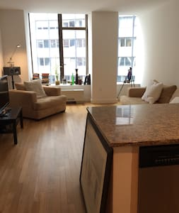 Financial district Lux Building. 24hr doorman, rooftop lounge with grills. 5 min walk to World Trade Center, Wall Street, Statue of Liberty, Seaport & subways 2/3/4/5/A/C/E/R/J/Z. Clean spacious in safe neighborhood, quiet @ night.