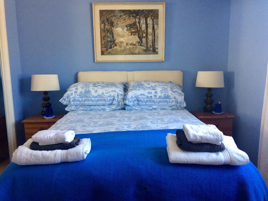 Calm blue room overlooking garden :)