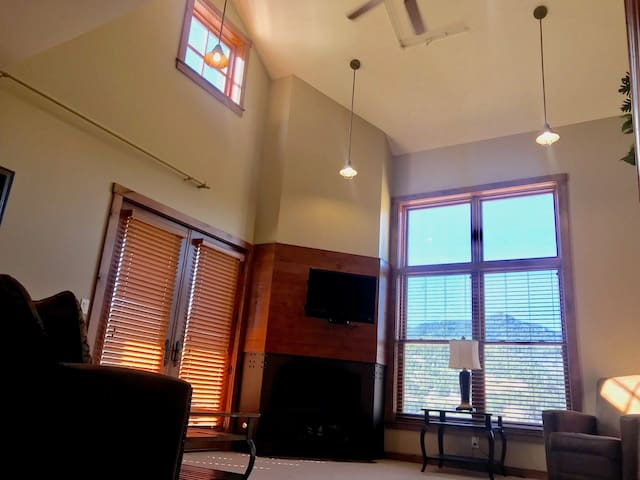 Penthouse Deluxe Studio Cath. Ceilings/FP/View 405