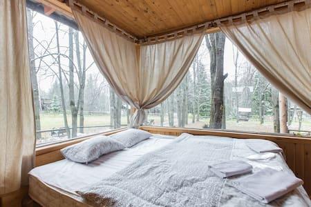 Апартаменты с панорамной спальней и верандой