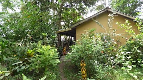 Ategbeh Garden Green Cabin