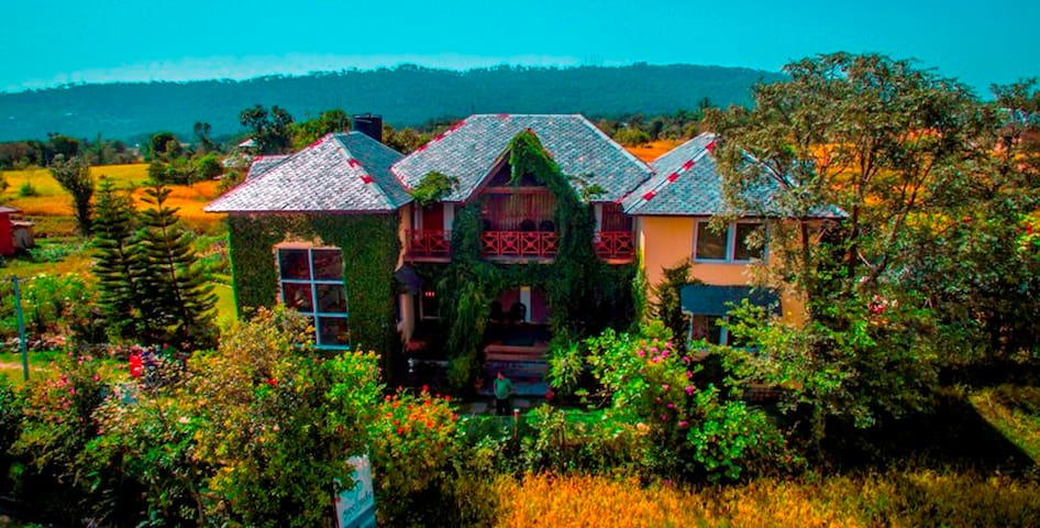 Seclude Palampur - A private room on ground floor