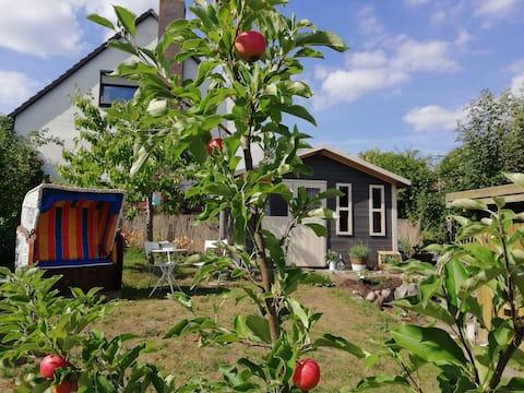 정원 전원주택, 해변 느낌 - 작지만 멋짐!