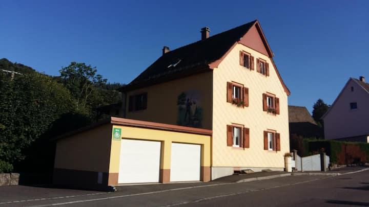 GITE DE LA FECHT - METZERAL (Alsace)