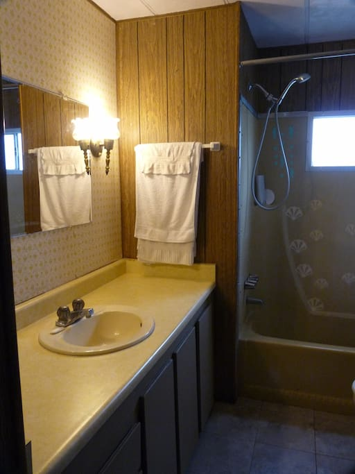 Lots Of Room For Your Bathroom Things In Shared Bath