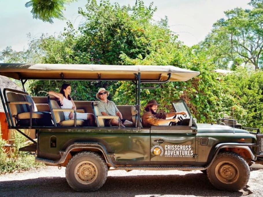 Safaris in open top vehicles can be booked at the lodge.