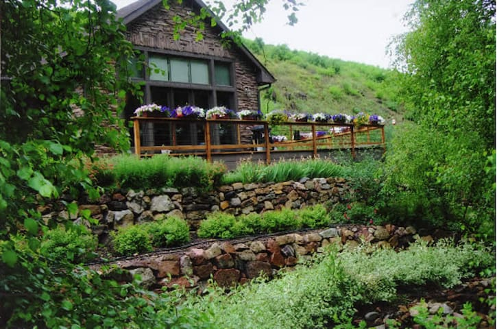 B&B  ON MITCHELL CREEK(simply Glenwood's best) #1