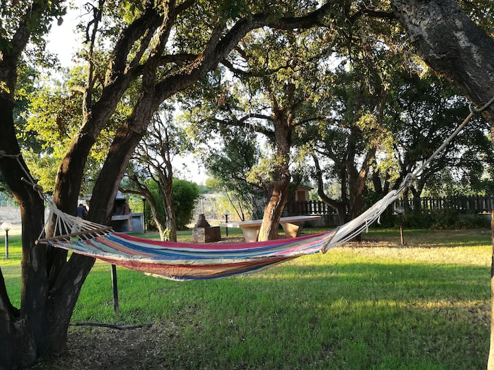 mare e relax - Villa rurale con giardino - P7486