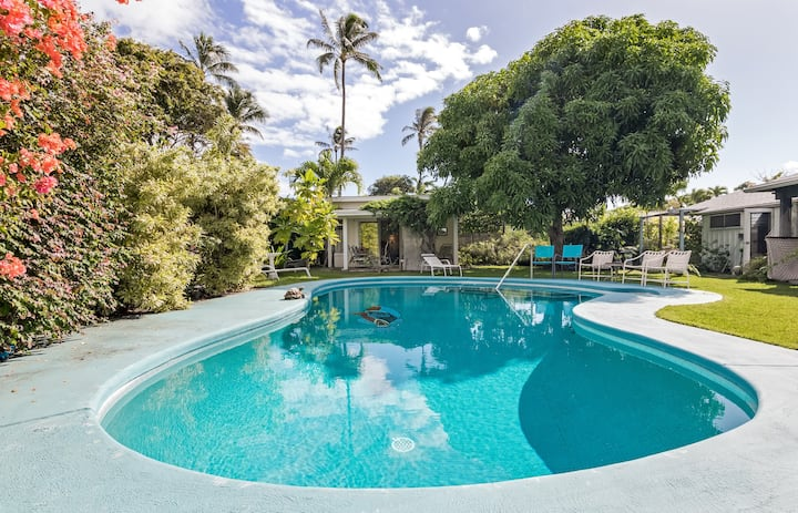 Tropical Garden Studio  - Pool on property