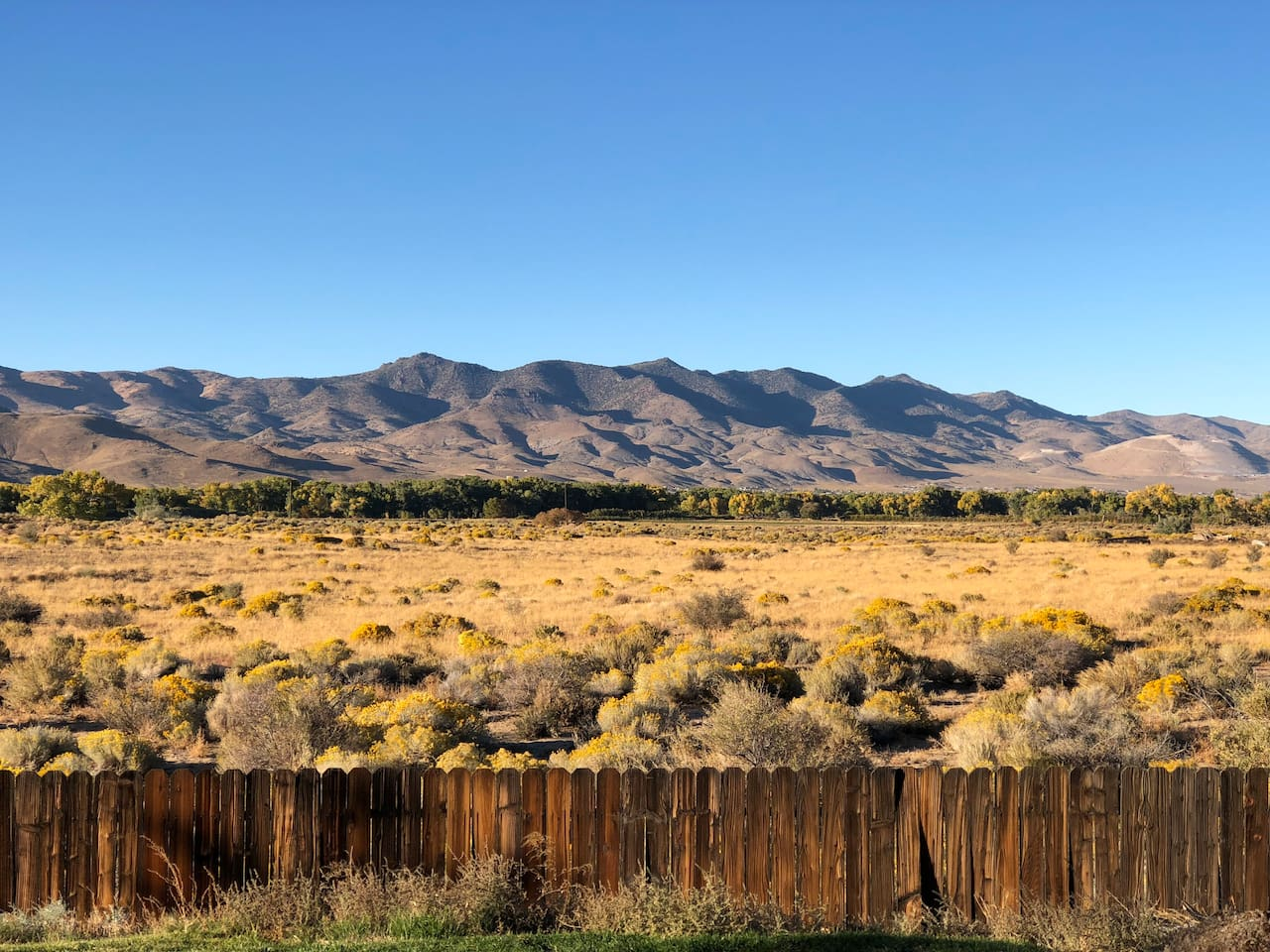 Beautiful unobstructed mountain views and cattle ranch