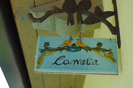 n.1 -Camelia - Camera Matrimoniale  - San Ferdinando - Bed & Breakfast