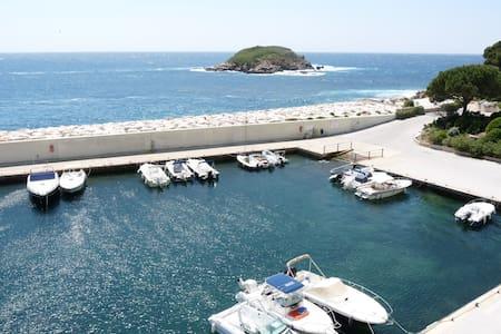 Bel appartement face à la mer dans Domaine Privé - Bandol