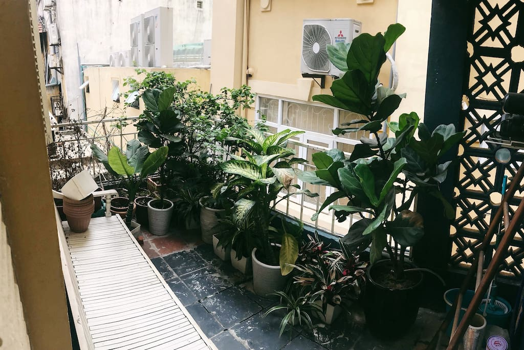 the balcony, scent of nature in the house