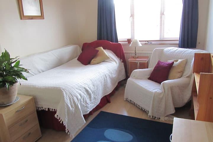 Light, clean, comfortable single room in Newark