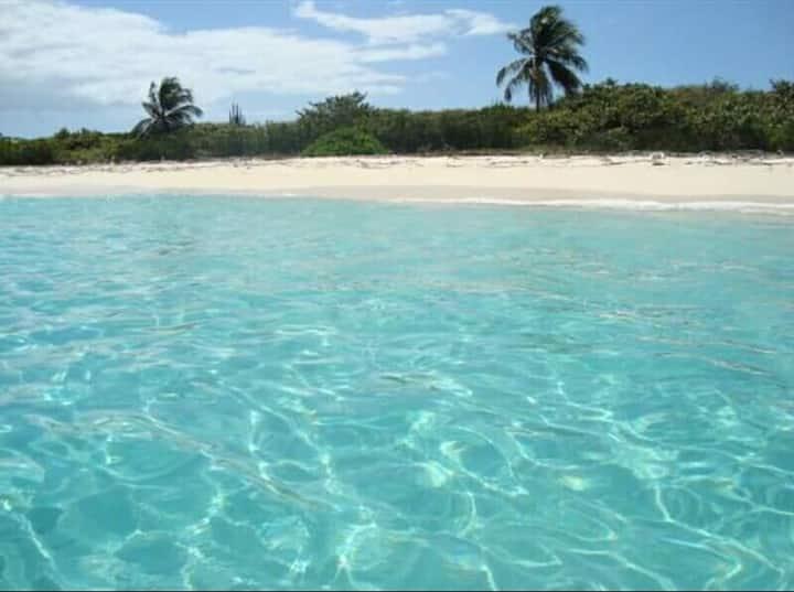 Castillo Playa Dominicus