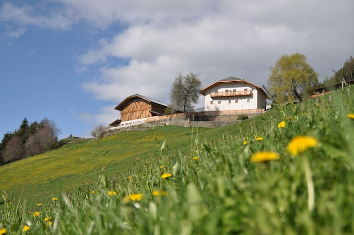 Ferienwohnung auf Südtiroler Bauernhof - Brixen - Pis