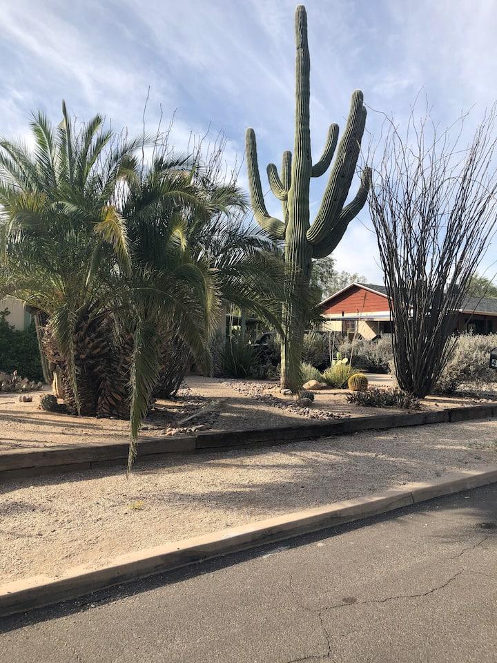 Casa de Colores brings you the Tucson experience