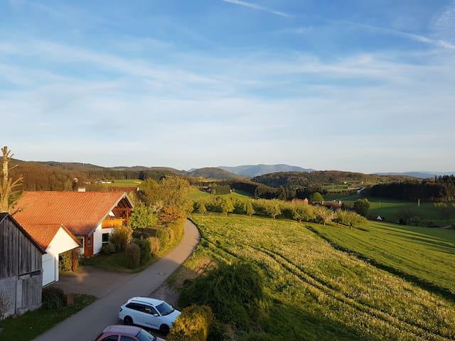 Erholung mit schöner Sicht auf den Schwarzwald - Freiamt - Reihenhaus