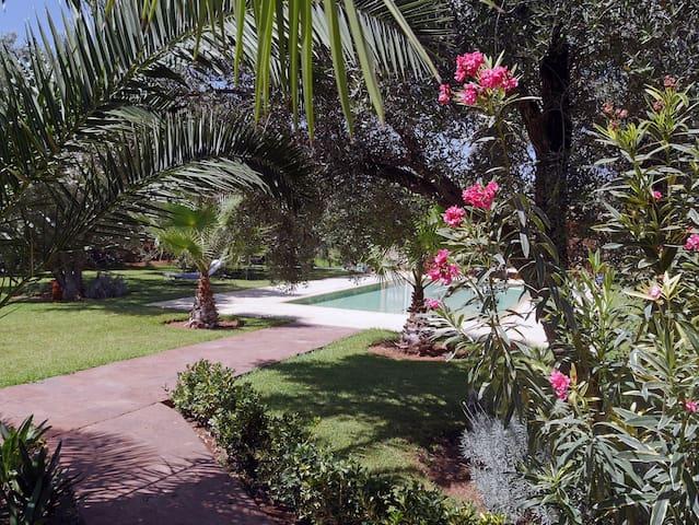 Maison dans grand parc arbore d oliviers