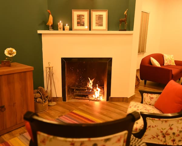 Common Fireplace