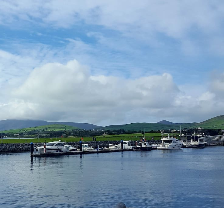 One of the many water sea views in Dingle & much more to explore