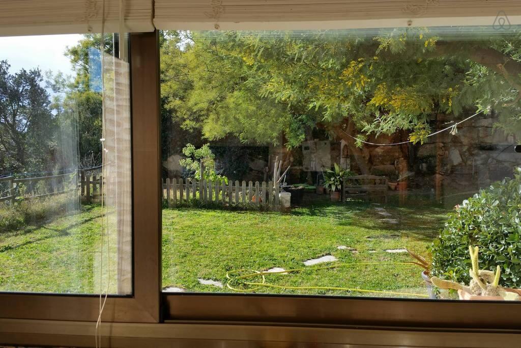 ventana de la cocina al jardín