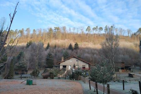 bel appartement spacieux en forêt avec terrasse